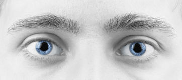 Yeux d'homme photographie stock