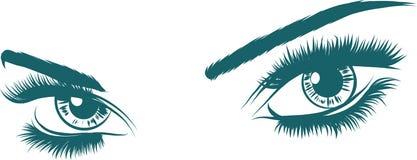 Yeux de femmes d'illustration de vecteur les beaux avec composent illustration de vecteur