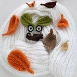 Yeux de l'hiver, fond simple de feuille tricotée Photo stock