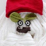 Yeux de l'hiver, fond simple de feuille tricotée Photographie stock