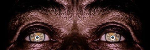 Yeux de vieil homme dans l'obscurité Photos stock