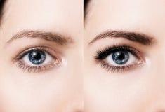 Yeux femelles avant et après l'extension de cil Photos libres de droits
