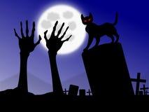 Yeux mauvais de chat noir Image stock