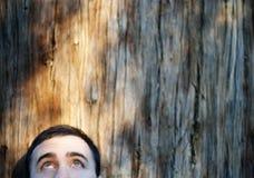 Yeux regardant texturisé en bois images stock