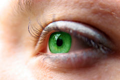 Yeux verts Images stock