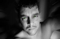 Yeux verts Photographie stock
