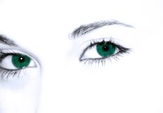Yeux verts Photos stock