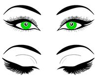 Yeux verts de Web d'une femme ou d'une fille Sourcils noirs, maquillage, cils Un ensemble de yeux ouverts et fermés illustration de vecteur