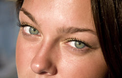 Yeux verts femelles proches. Images stock