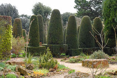 Yew Pillars, Hidcote Manor Garden, Chipping Campden, Gloucestershire, England. Yew Pillar Topiary at Hidcote Manor Garden, Chipping Campden, Gloucestershire stock photo