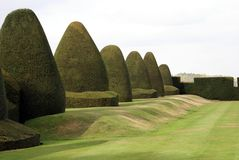 Yew topiary garden, Chirk castle, Wales, England Stock Photos