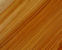 Yew wood texture Stock Photography