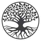 Δέντρο του παγκόσμιου δέντρου Yggdrasil ζωής Στοκ Εικόνες