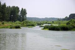 Yi River wetland Luoyang China Stock Image