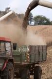 Yielding crop. Into a trailer Royalty Free Stock Photos