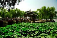 yiheyuan slottsommar Arkivfoto