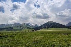Yili Nalati prairie Royalty Free Stock Image