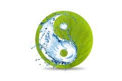 Yin и зеленый цвет символа yang с водой Стоковое фото RF