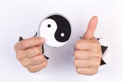 杨yin 免版税图库摄影