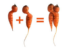 Yin e cenouras de yang imagem de stock