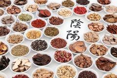 Yin e Yang Chinese Herbs fotografia stock libera da diritti