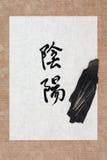 Yin e Yang Therapy fotografia stock libera da diritti