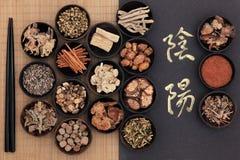 Yin en Yang Therapy Stock Afbeelding