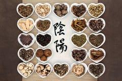 Yin et Yang Herbs photographie stock libre de droits