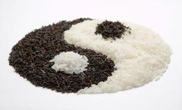 yin för 4 yang Royaltyfria Bilder