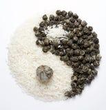 yin för 8 yang Arkivbild