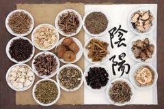 Yin och Yang Herbs arkivbilder