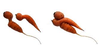 Yin und Yang-Karotten lizenzfreies stockbild