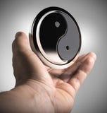 Yin Yang - αρμονία Στοκ Εικόνες