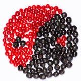 Yin yang av bär royaltyfri bild