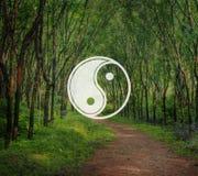 Yin Yang Balance Contrast Opposite Religion kulturbegrepp royaltyfri fotografi