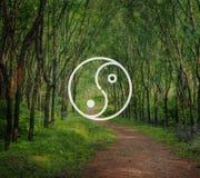 Yin Yang Balance Contrast Opposite Religions-Kultur-Konzept Lizenzfreie Stockfotografie
