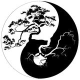 Yin Yang Bonsai Royalty-vrije Stock Foto