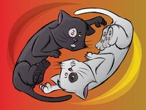 Yin Yang Cats. Cartoon of Black and White Cats Fighting Stock Image
