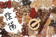 Yin and Yang Chinese Herbs Stock Images