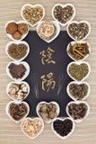 Yin Yang Chinese Medicine Fotografie Stock