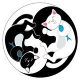 Yin yang con i gatti in bianco e nero di neko di maneki Fotografia Stock