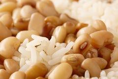 Yin yang del arroz y de las habas fotografía de archivo