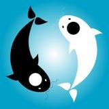 Yin Yang. Fish, Yin Yang Symbol, in the water cycle Stock Photo