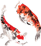 Yin - yang. Hand-drawn watercolor fairy Japanese koi floating in a circle, representing the shape of a yin - yang Stock Photo