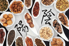 Yin and Yang Herbs. Chinese herbal medicine selection with yin yang calligraphy script on rice paper. Translation reads as yin yang stock photo