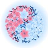 Yin Yang made of sakura Stock Photos