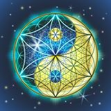 Yin Yang Sacral Geometry royalty illustrazione gratis