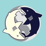 Yin yang sharks Royalty Free Stock Image