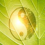 Yin Yang Sign Royalty Free Stock Image