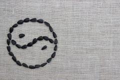 Yin Yang symbol kłaść out od słonecznikowych ziaren Zdjęcie Stock
